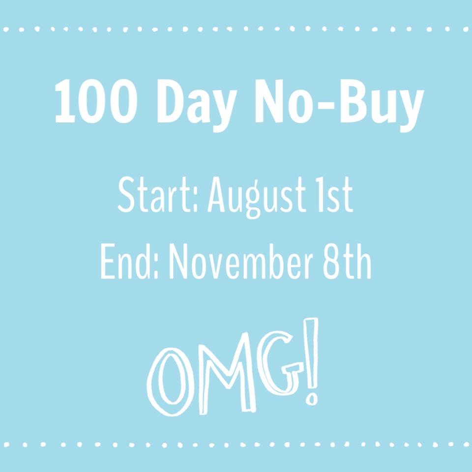 100 Day No-Buy Makeup