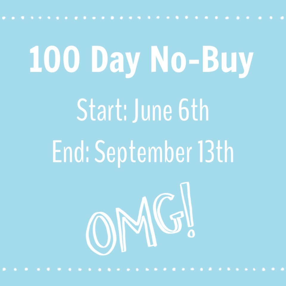 100 Day No-Buy Pt. II